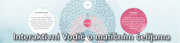 Interaktivni vodič o matičnim ćelijama