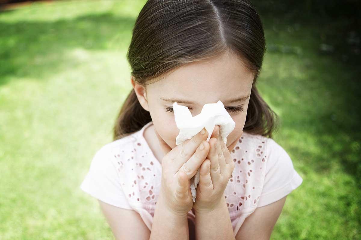 alergija2