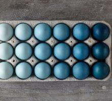 Isprobajte Ferlauf metodu farbanja jaja